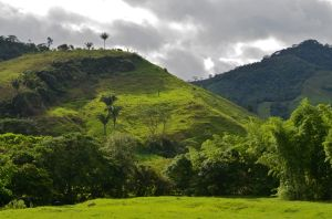 Caquetá countryside